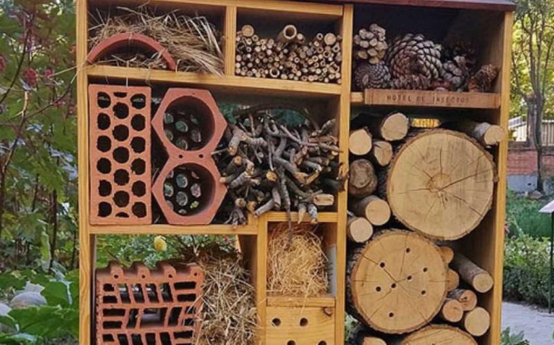 Hotel para insectos en el Jardín Botánico
