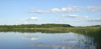La Fundación Botín organiza una conferencia sobre gestión de conflictos en relación con los recursos hídricos