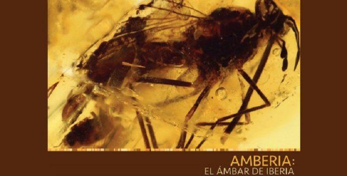 Amberia Amber of Iberia