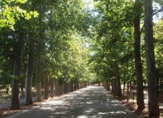 via verde madrid