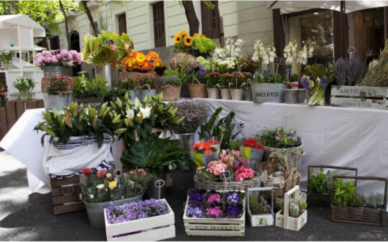 mercado de las flores madrid, jardin efimero madrid, flores madrid