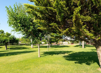 gestion zonas verdes madrid
