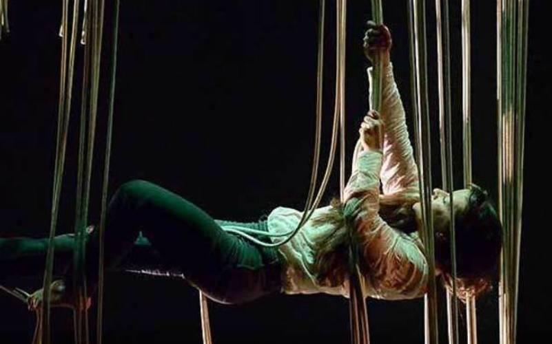 teatralia circus